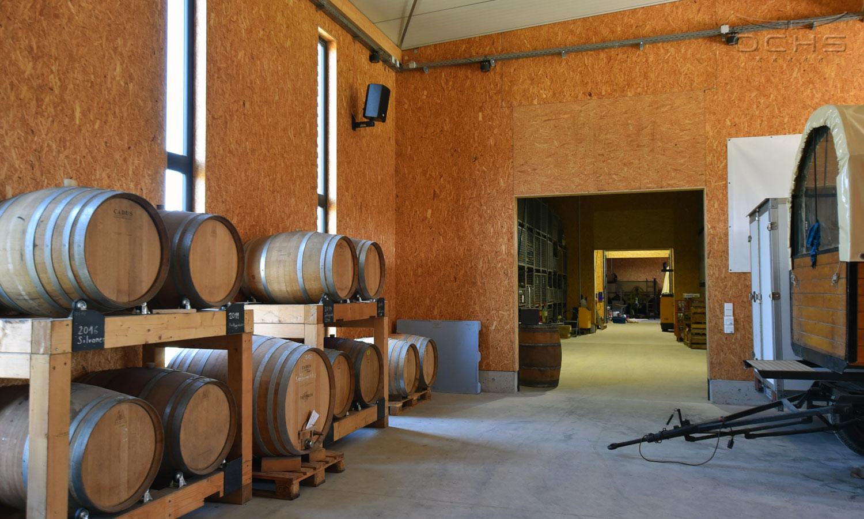 Weingut Hoos vineyards